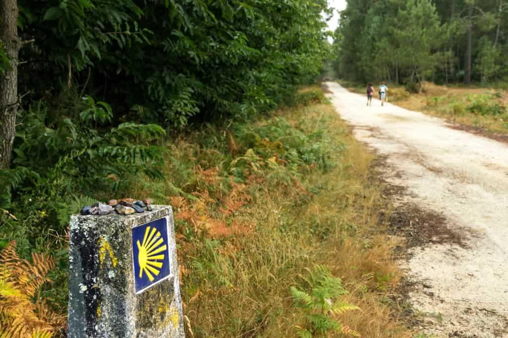 El Camino Peopel The Podcast- Jose Mari ardanazand Easy Hike Pt