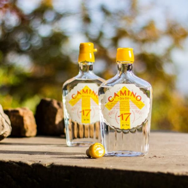 two bottles of Camino Dry Gin